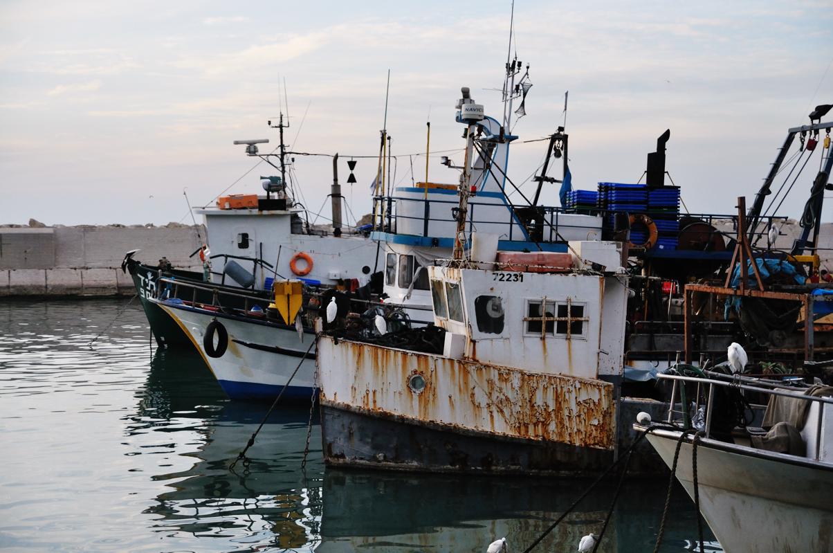 New Boats....