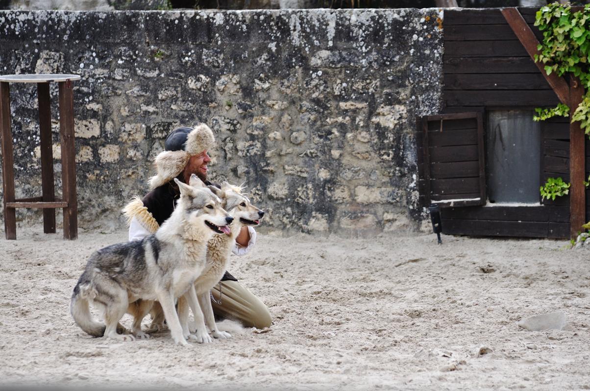Oui, ça s'appelle les aigles des Remaprts et il y a des loups, je sais