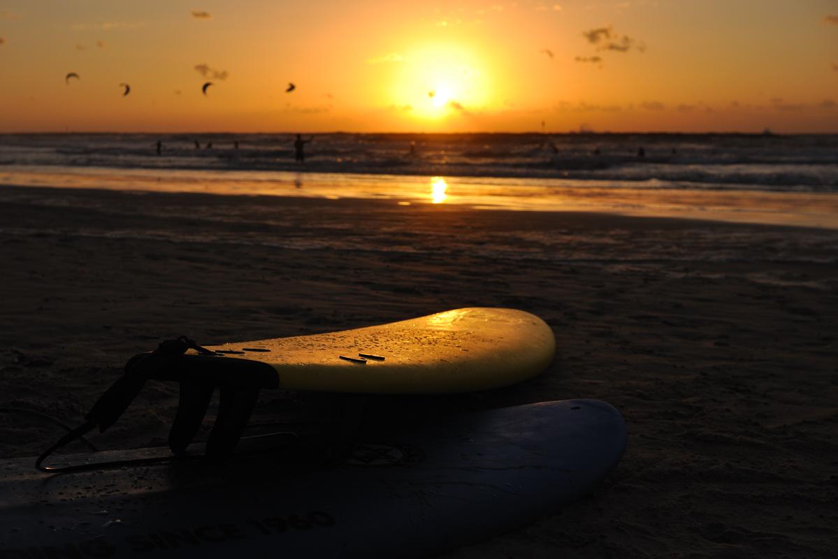 surfboard on sunset