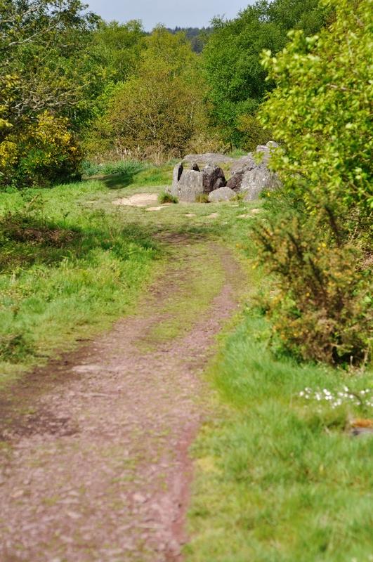 L'hostié de Viviane ou tombeau des druides