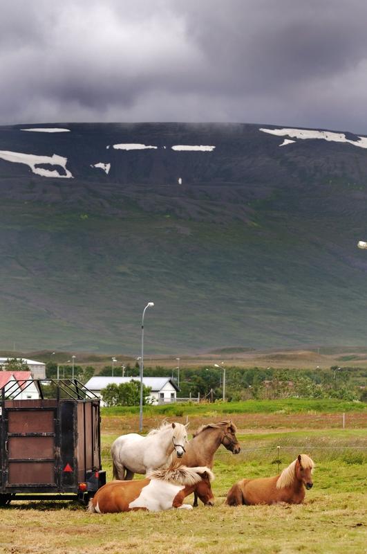 Blonduos - Islande