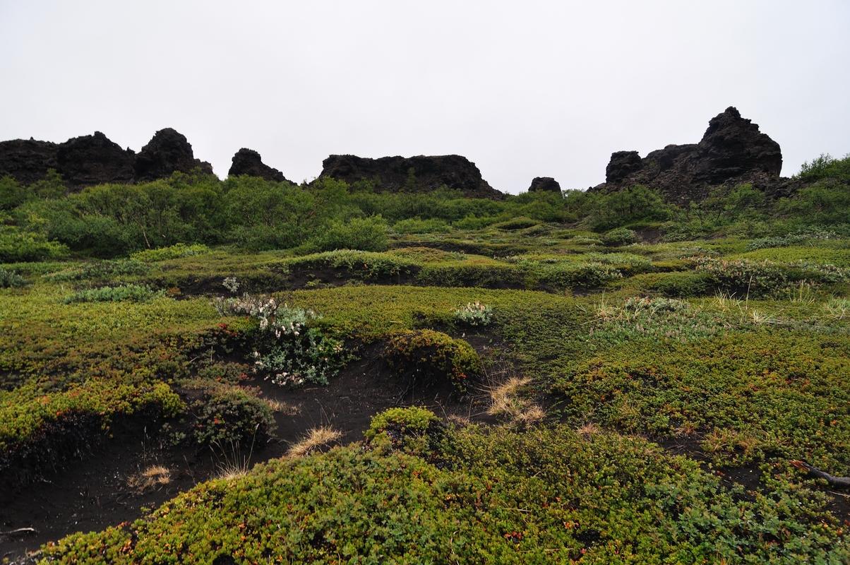 Dimmuborgir - Islande