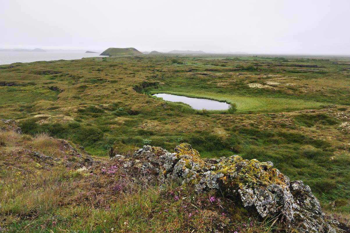 Pseudo-cratères à Skutustadir - Islande